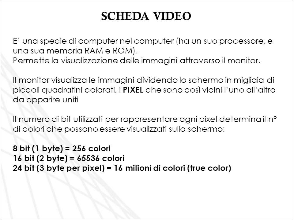 SCHEDA VIDEO E' una specie di computer nel computer (ha un suo processore, e una sua memoria RAM e ROM).