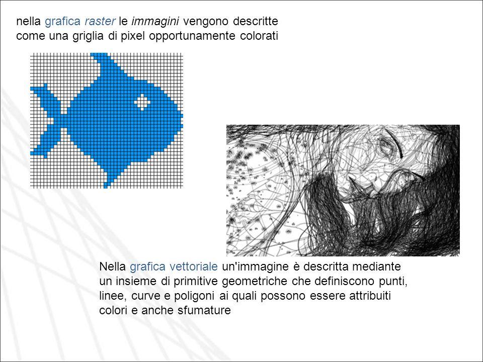 nella grafica raster le immagini vengono descritte