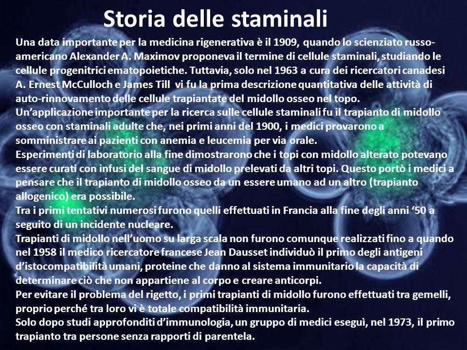 Storia delle staminali