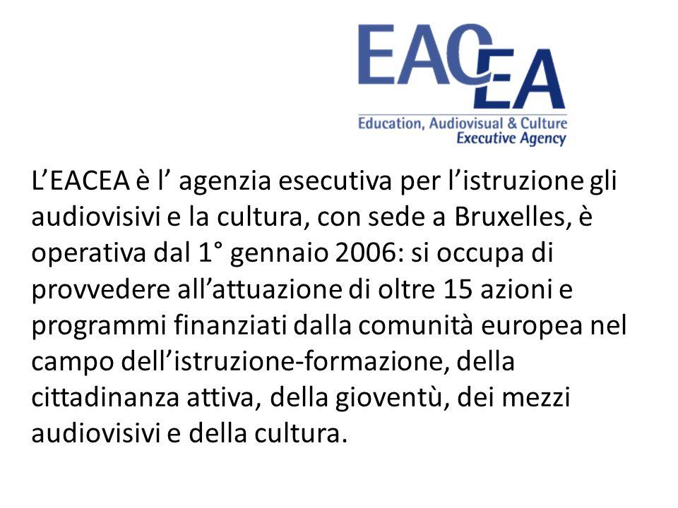 L'EACEA è l' agenzia esecutiva per l'istruzione gli audiovisivi e la cultura, con sede a Bruxelles, è operativa dal 1° gennaio 2006: si occupa di provvedere all'attuazione di oltre 15 azioni e programmi finanziati dalla comunità europea nel campo dell'istruzione-formazione, della cittadinanza attiva, della gioventù, dei mezzi audiovisivi e della cultura.