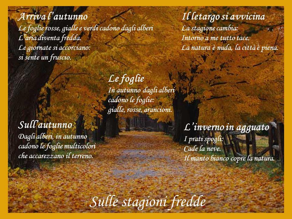 Sulle stagioni fredde Arriva l'autunno Il letargo si avvicina