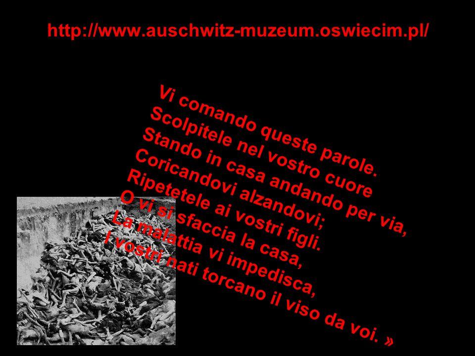 http://www.auschwitz-muzeum.oswiecim.pl/