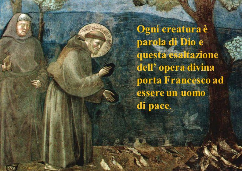 Ogni creatura è parola di Dio e questa esaltazione dell' opera divina porta Francesco ad essere un uomo
