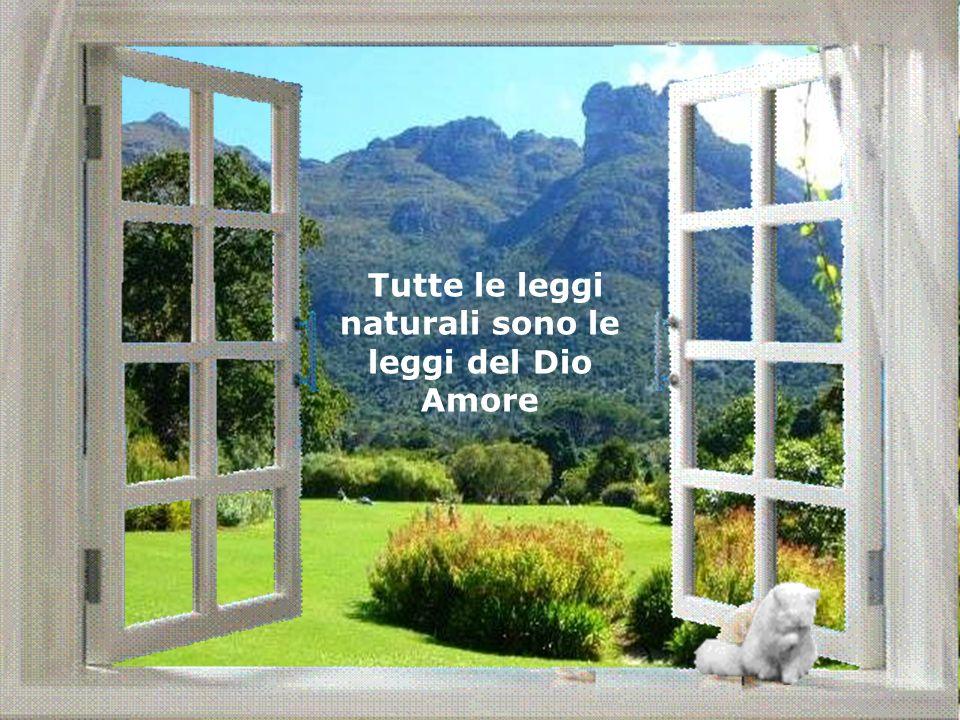 Tutte le leggi naturali sono le leggi del Dio Amore
