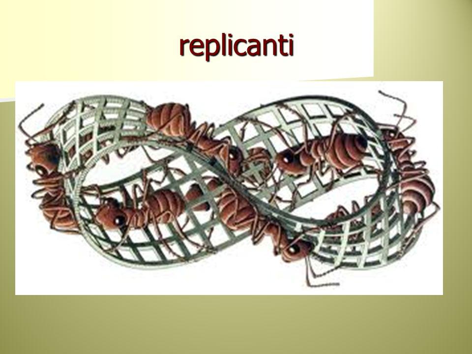 replicanti