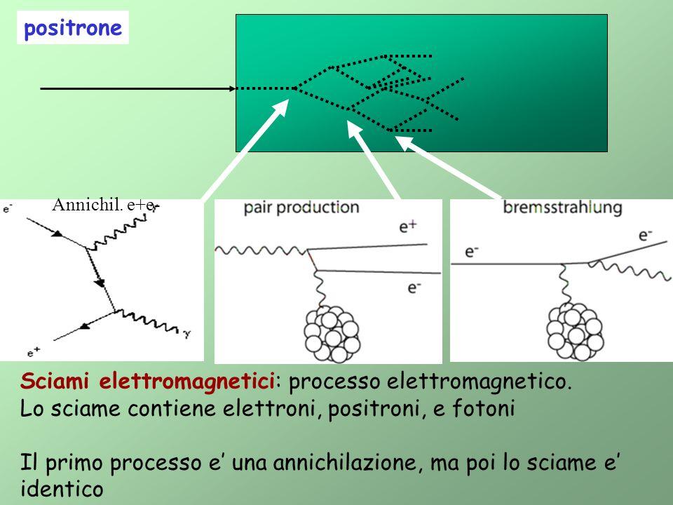 Sciami elettromagnetici: processo elettromagnetico.