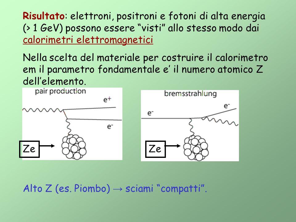 Risultato: elettroni, positroni e fotoni di alta energia (> 1 GeV) possono essere visti allo stesso modo dai calorimetri elettromagnetici