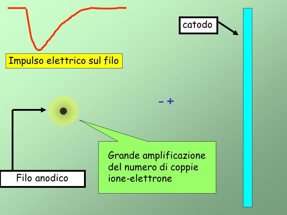- + catodo Impulso elettrico sul filo Grande amplificazione