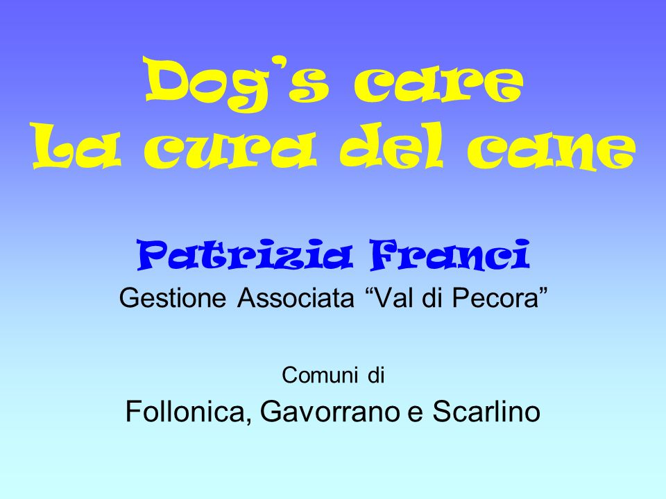 Dog's care La cura del cane