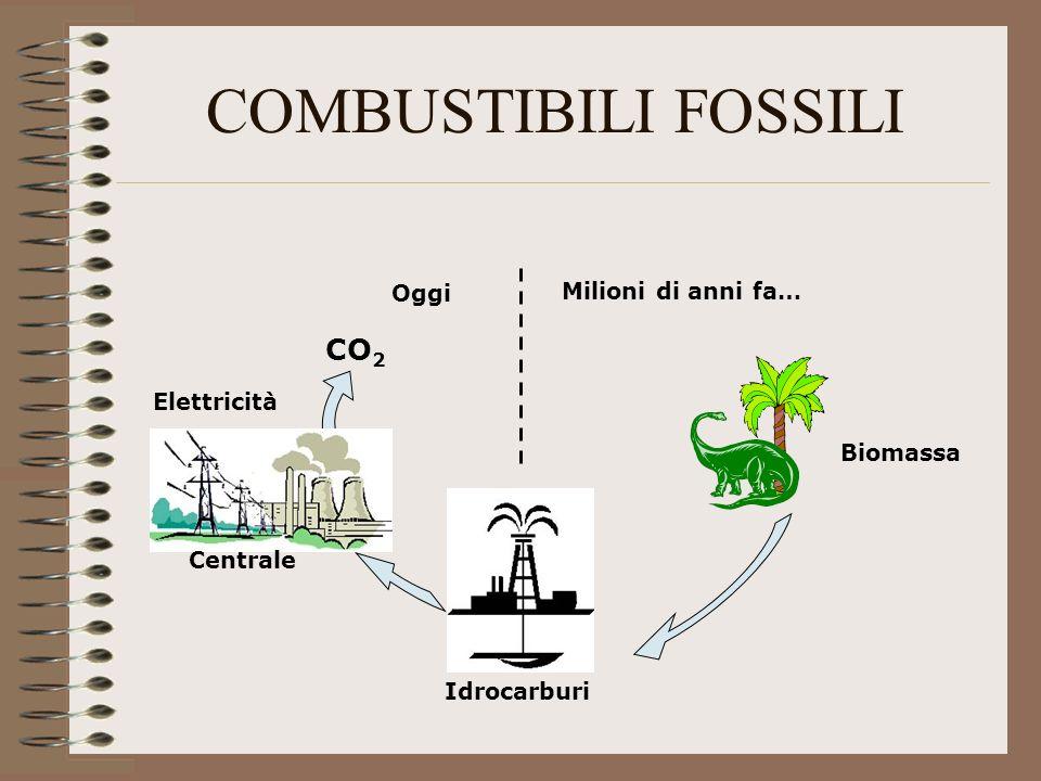 COMBUSTIBILI FOSSILI CO2 Oggi Milioni di anni fa… Elettricità Biomassa