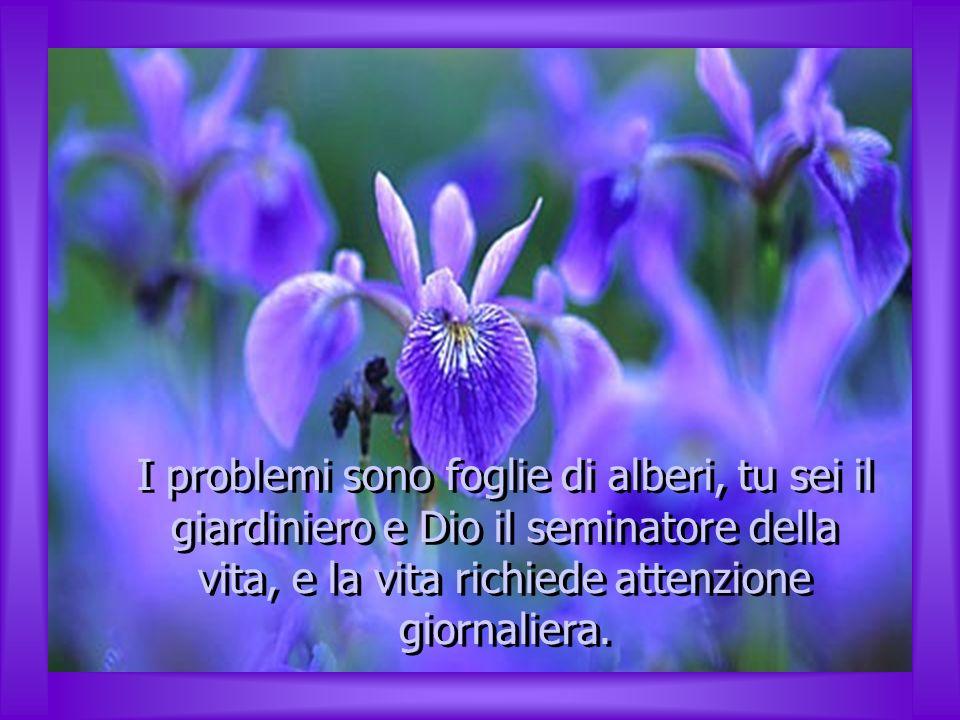 I problemi sono foglie di alberi, tu sei il giardiniero e Dio il seminatore della vita, e la vita richiede attenzione giornaliera.