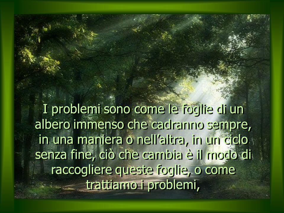 I problemi sono come le foglie di un albero immenso che cadranno sempre, in una maniera o nell'altra, in un ciclo senza fine, ciò che cambia è il modo di raccogliere queste foglie, o come trattiamo i problemi,