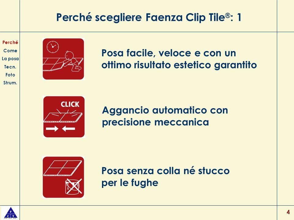 Perché scegliere Faenza Clip Tile®: 1