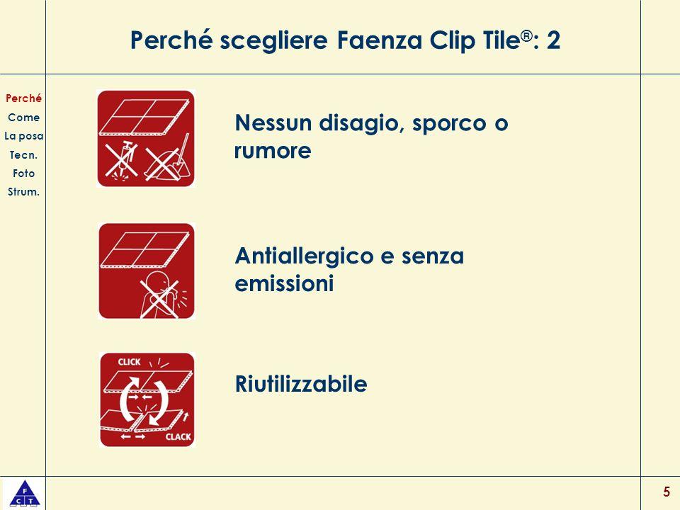 Perché scegliere Faenza Clip Tile®: 2