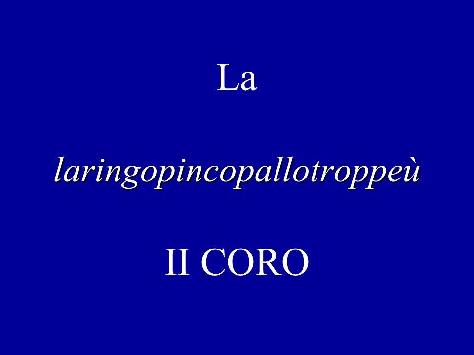 La laringopincopallotroppeù II CORO