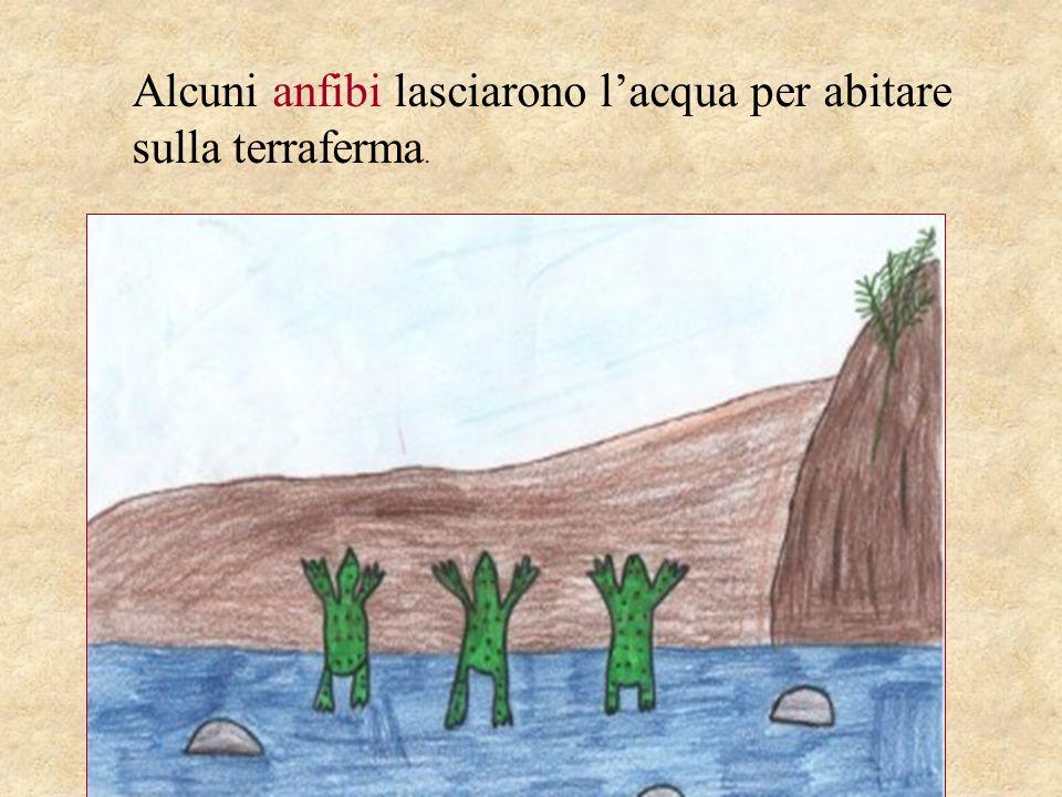 Alcuni anfibi lasciarono l'acqua per abitare sulla terraferma.