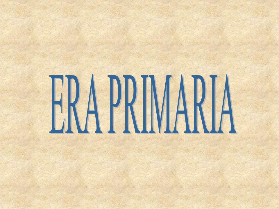 ERA PRIMARIA