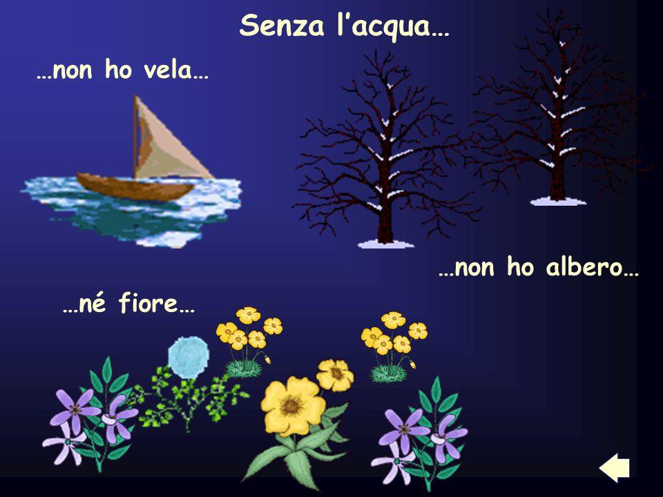 Senza l'acqua… …non ho vela… …non ho albero… …né fiore… 5