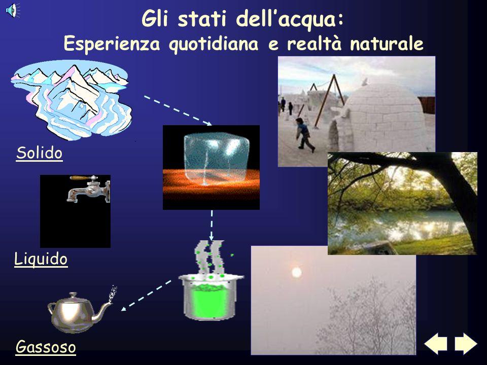 Esperienza quotidiana e realtà naturale