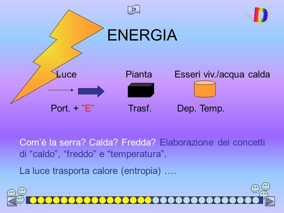 ENERGIA D Luce Pianta Esseri viv./acqua calda