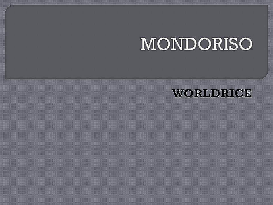 MONDORISO WORLDRICE
