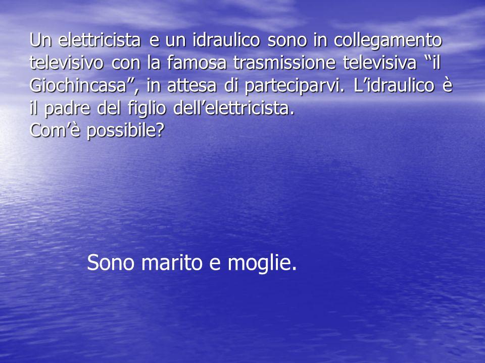 Un elettricista e un idraulico sono in collegamento televisivo con la famosa trasmissione televisiva il Giochincasa , in attesa di parteciparvi. L'idraulico è il padre del figlio dell'elettricista. Com'è possibile