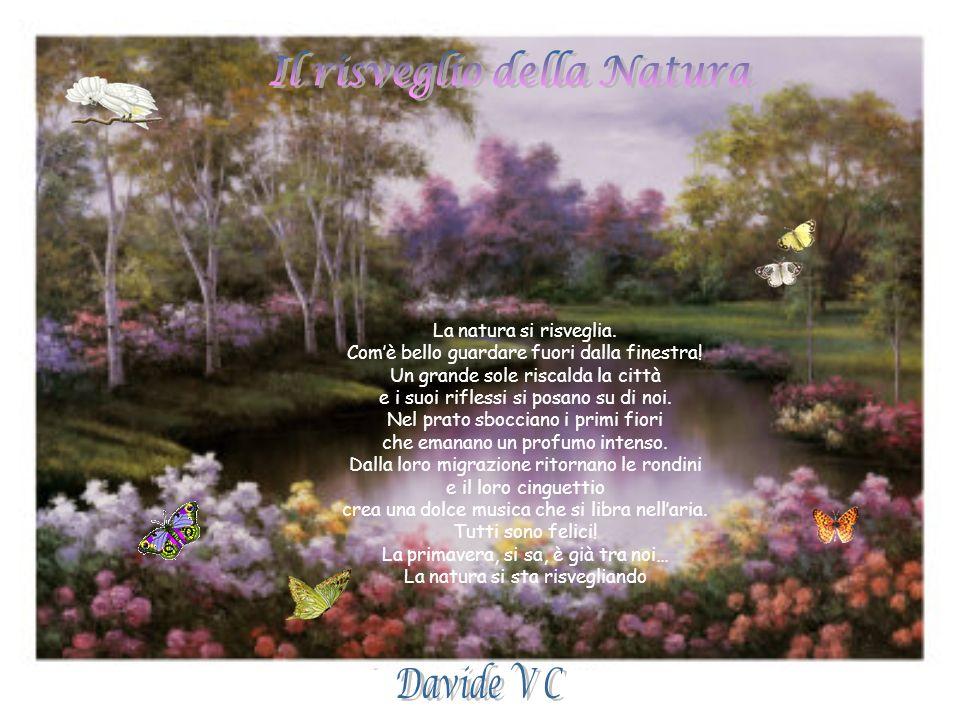 Il risveglio della Natura