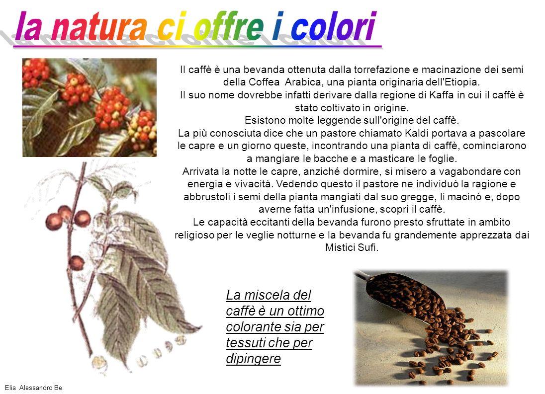 la natura ci offre i colori