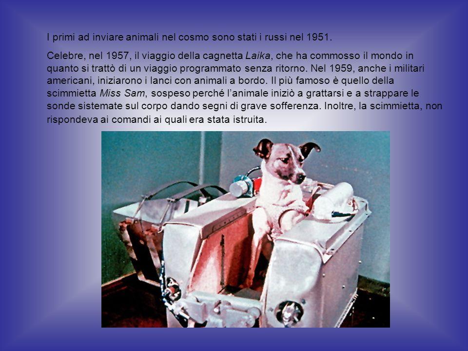 I primi ad inviare animali nel cosmo sono stati i russi nel 1951.