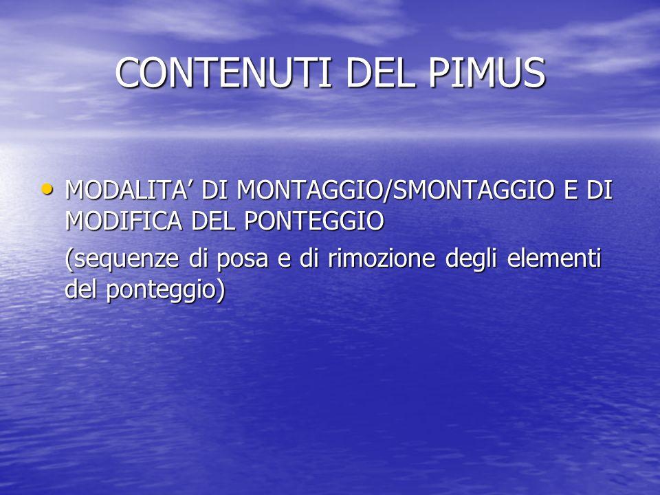 CONTENUTI DEL PIMUS MODALITA' DI MONTAGGIO/SMONTAGGIO E DI MODIFICA DEL PONTEGGIO.