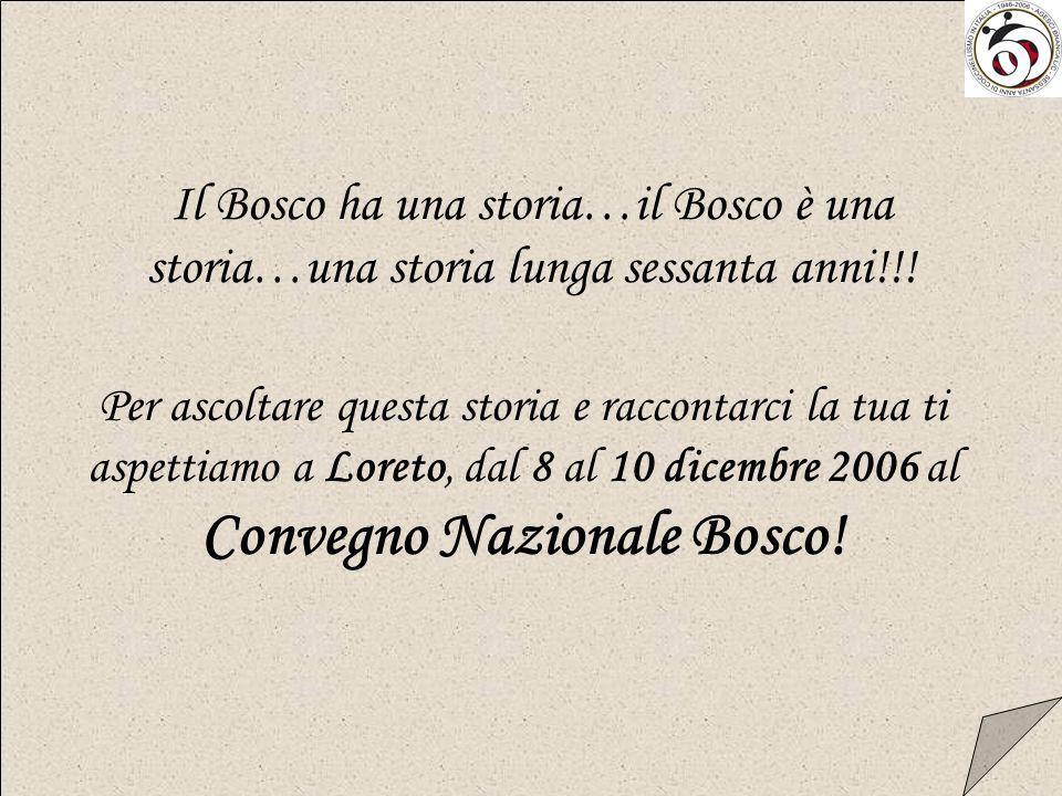 Il Bosco ha una storia…il Bosco è una storia…una storia lunga sessanta anni!!!