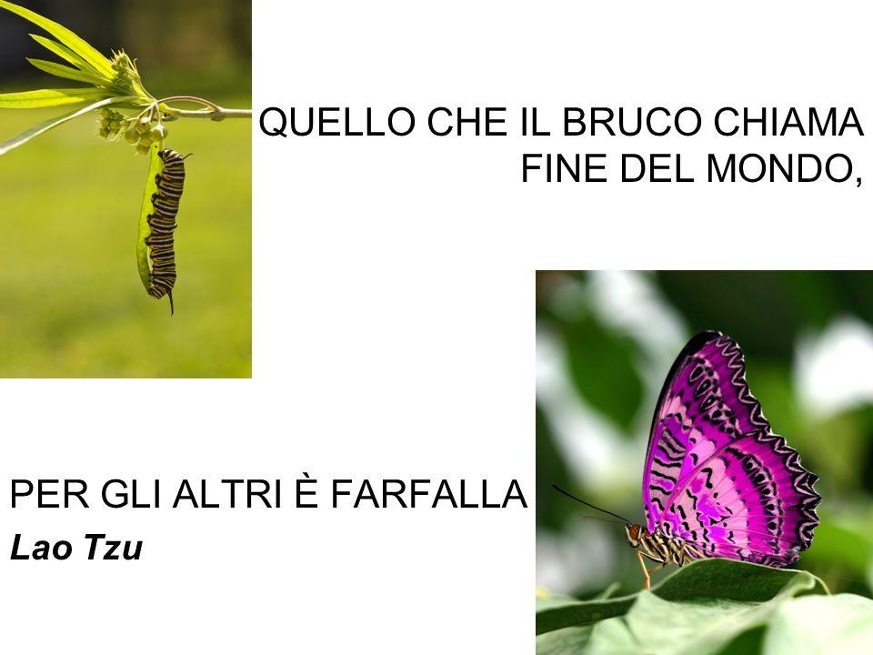 QUELLO CHE IL BRUCO CHIAMA FINE DEL MONDO,