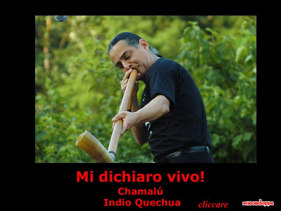 Mi dichiaro vivo! Chamalú Indio Quechua cliccare