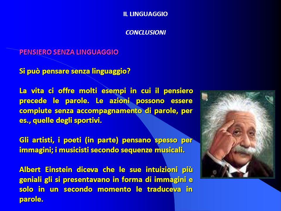 IL LINGUAGGIO CONCLUSIONI