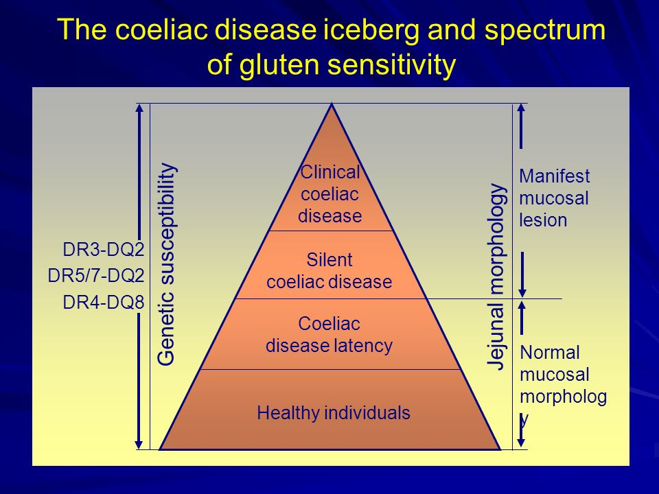 The coeliac disease iceberg and spectrum