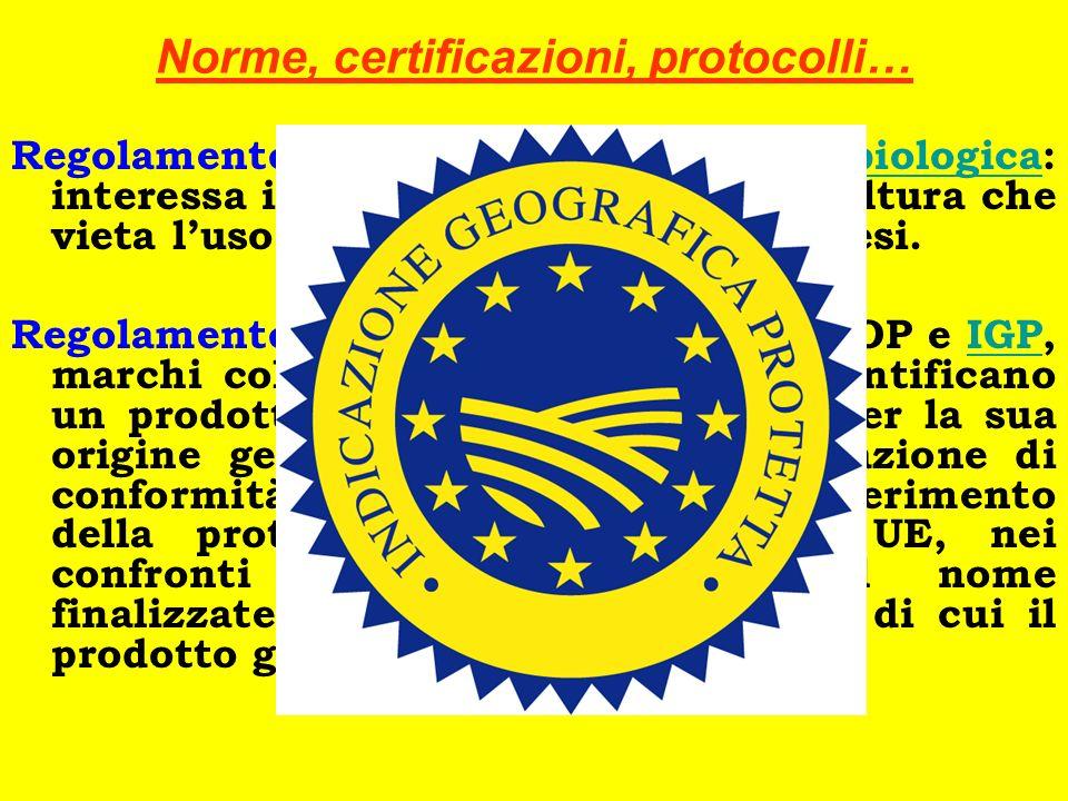 Norme, certificazioni, protocolli…