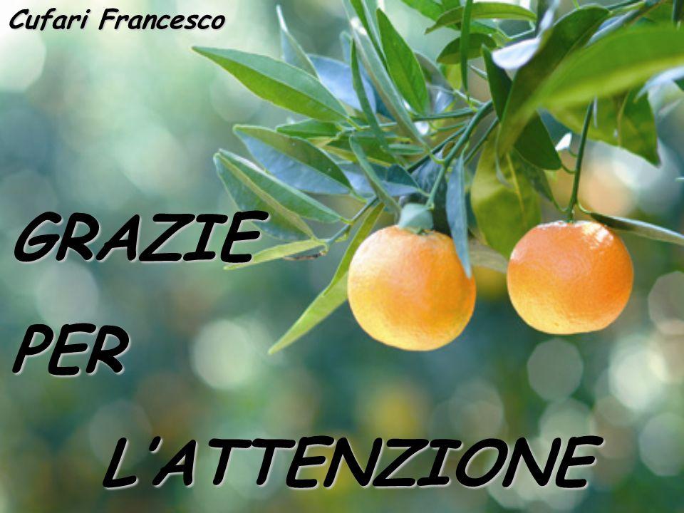 Cufari Francesco GRAZIE PER L'ATTENZIONE