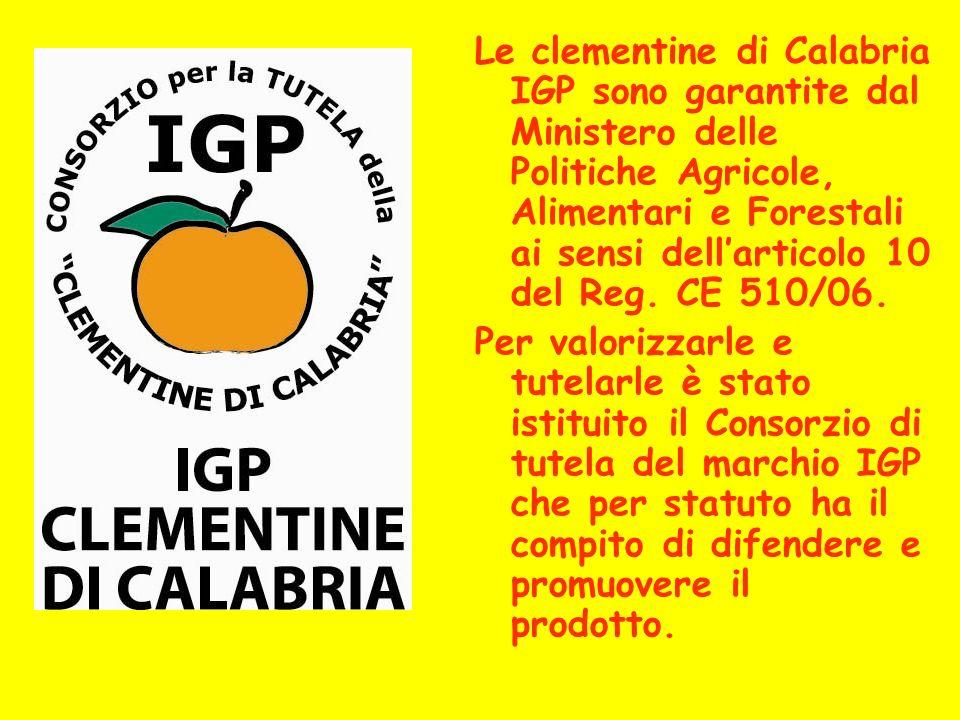 Le clementine di Calabria IGP sono garantite dal Ministero delle Politiche Agricole, Alimentari e Forestali ai sensi dell'articolo 10 del Reg. CE 510/06.
