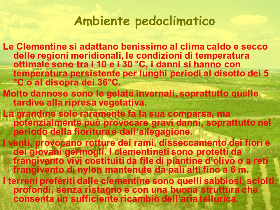 Ambiente pedoclimatico