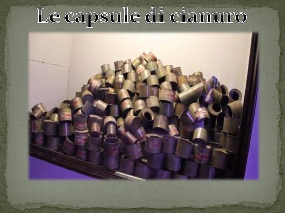 Le capsule di cianuro