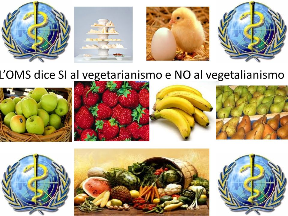 L'OMS dice SI al vegetarianismo e NO al vegetalianismo