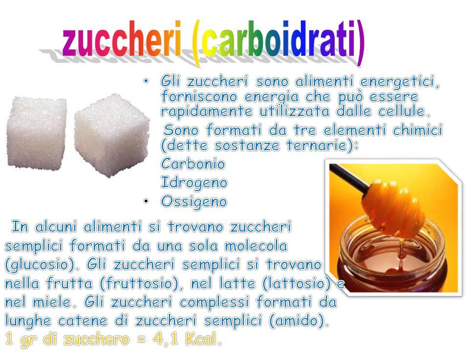 zuccheri (carboidrati)