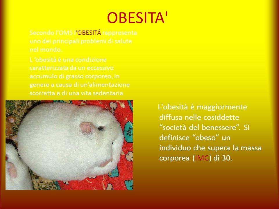 OBESITA Secondo l'OMS l'OBESITÁ rappresenta uno dei principali problemi di salute nel mondo.