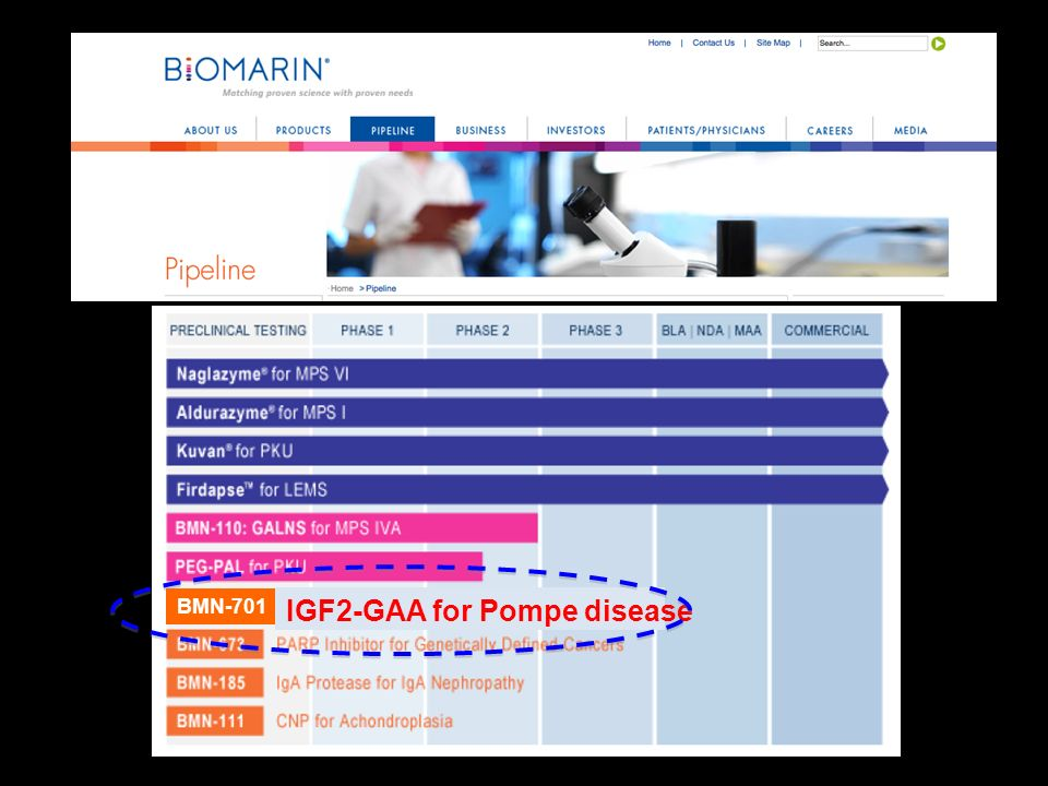 IGF2-GAA for Pompe disease