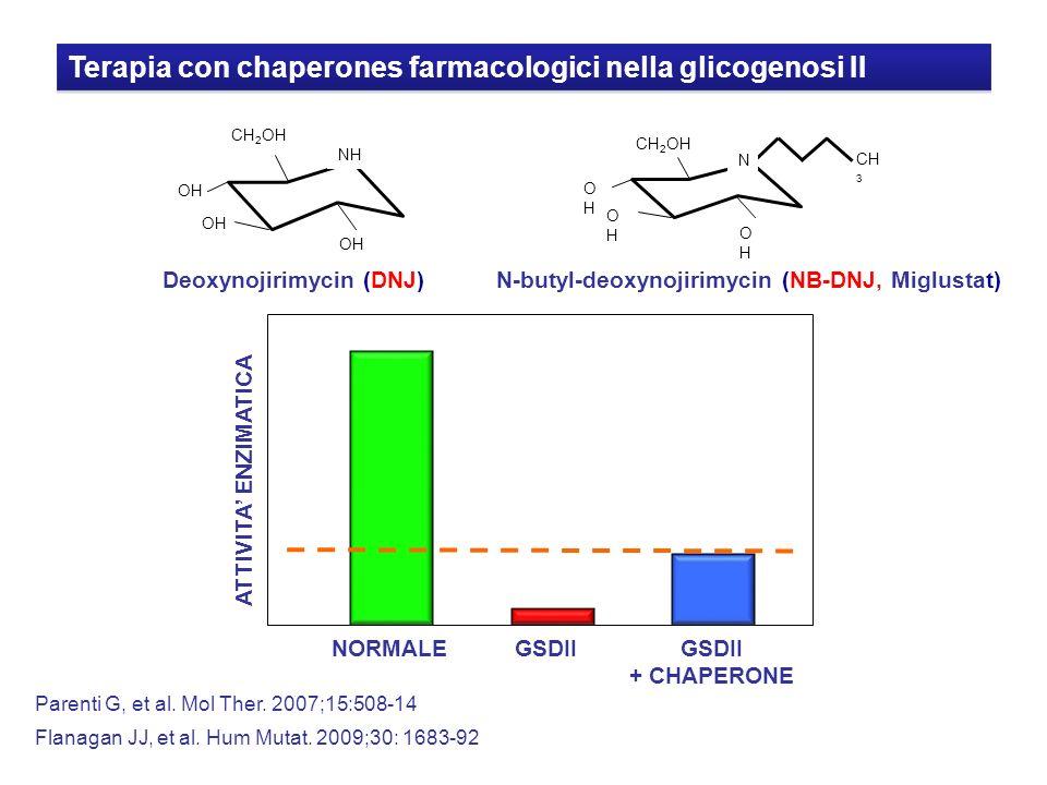 Terapia con chaperones farmacologici nella glicogenosi II