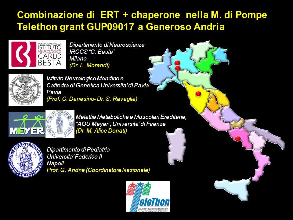 Combinazione di ERT + chaperone nella M. di Pompe