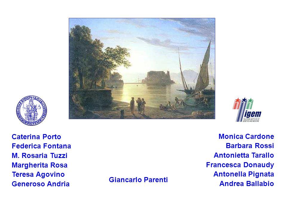 Caterina Porto Federica Fontana. M. Rosaria Tuzzi. Margherita Rosa. Teresa Agovino. Generoso Andria.