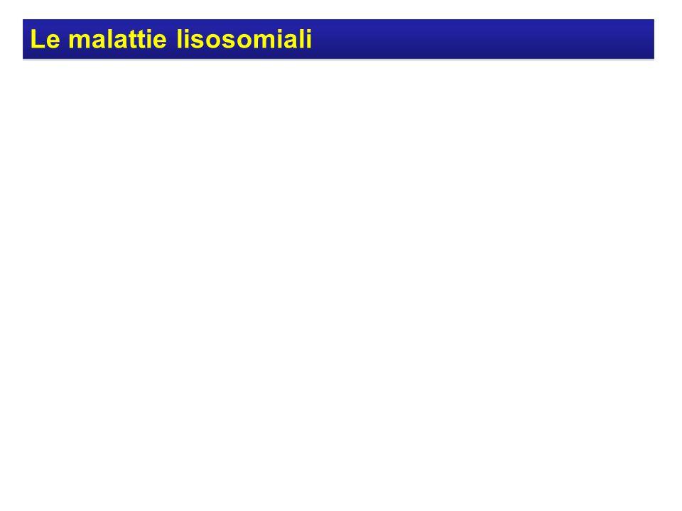 Le malattie lisosomiali
