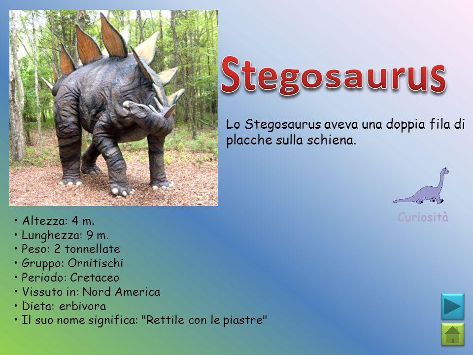 Stegosaurus Lo Stegosaurus aveva una doppia fila di placche sulla schiena. Curiosità. • Altezza: 4 m.