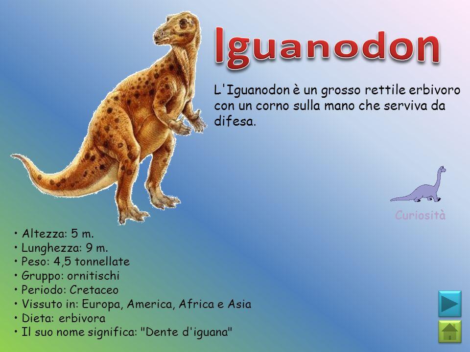 Iguanodon L Iguanodon è un grosso rettile erbivoro con un corno sulla mano che serviva da difesa. Curiosità.